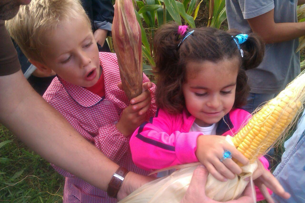 Niños cosechando en Ecoasturias