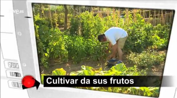 Reportaje sobre huertos urbanos en TVE