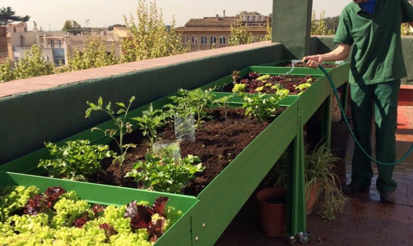 Mesa de cultivo metálica para huertos urbanos de venta online