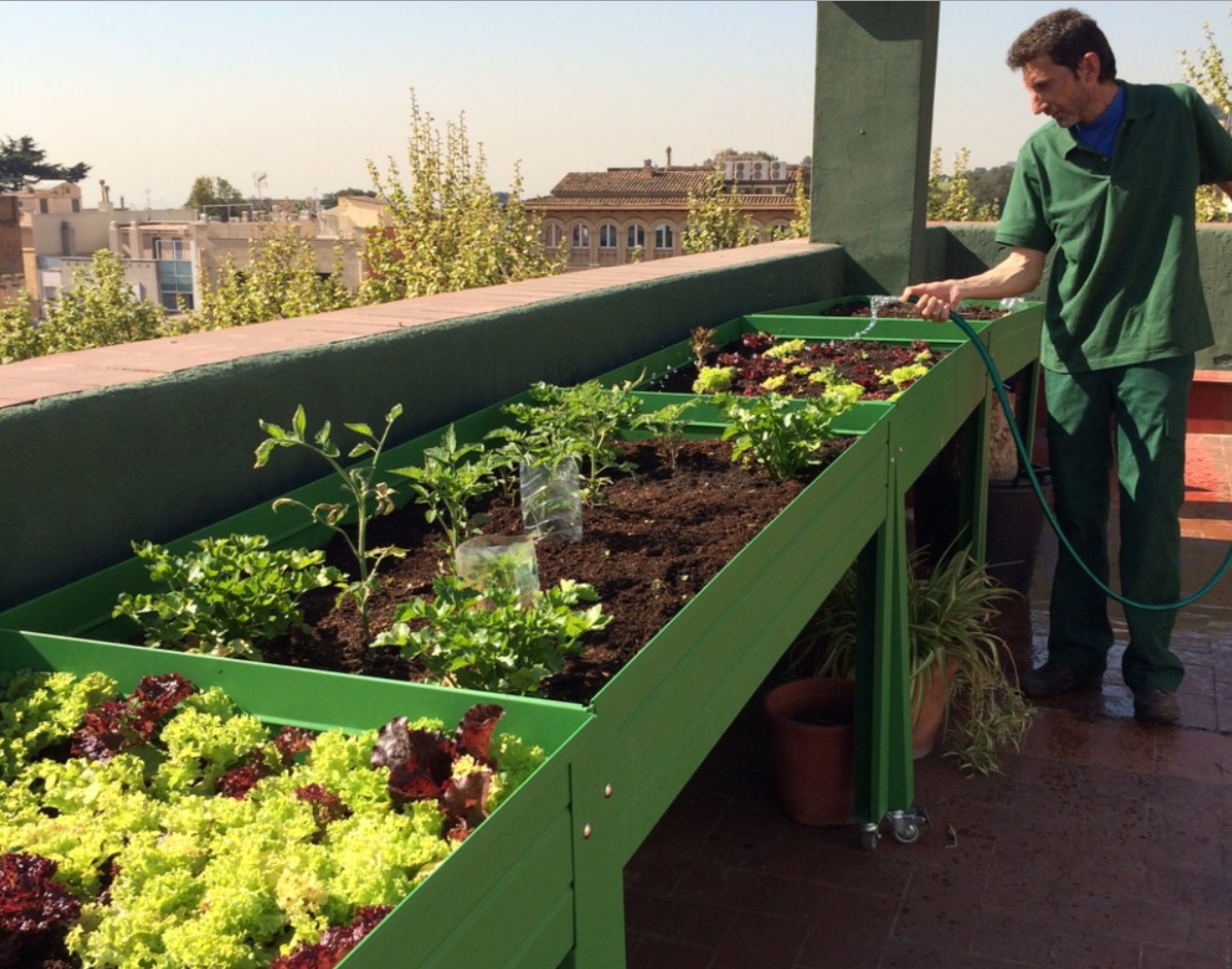 Mesa de cultivo met lica para huertos urbanos eco asturias for Mesas de cultivo urbano