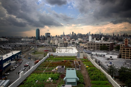 EcoAsturias y los huertos urbanos de Nueva York (I)