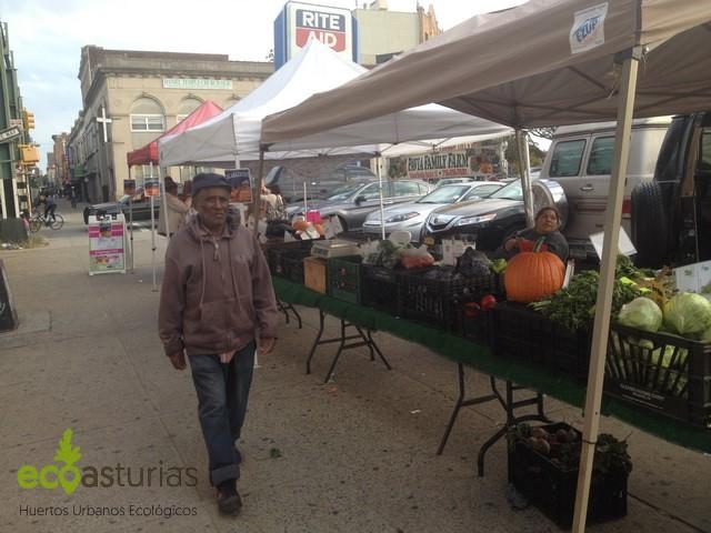 EcoStation NY, Huertos Urbanos de Nueva York por EcoAsturias (IV)