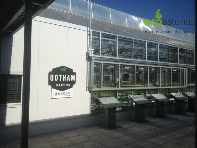 Gotham Greens, Huertos Urbanos de Nueva York por EcoAsturias (III)