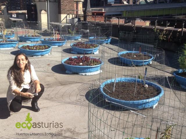 Hells-Kitchen-Farm-Project-Carmen-álvarez-urbanfarming-UrbanGarden-Huertos-urbanos-Nueva-York-EcoAsturias