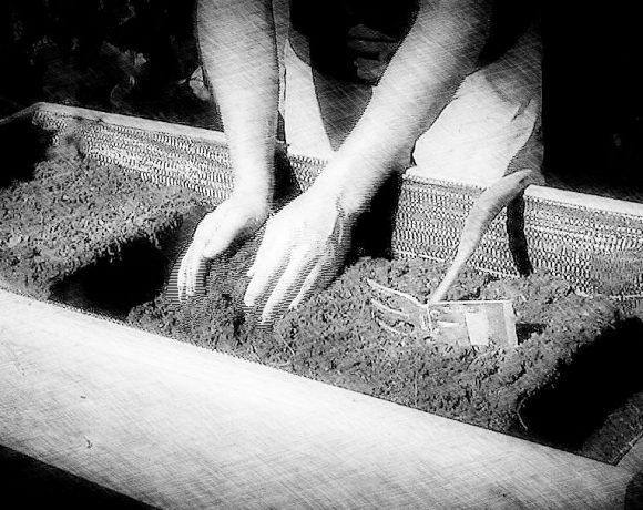 Sustrato ecológico para mesas de cultivo en tu huerto urbano