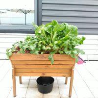 Mesa de cultivo en huerto urbano ecológico Ecoasturias en Orange