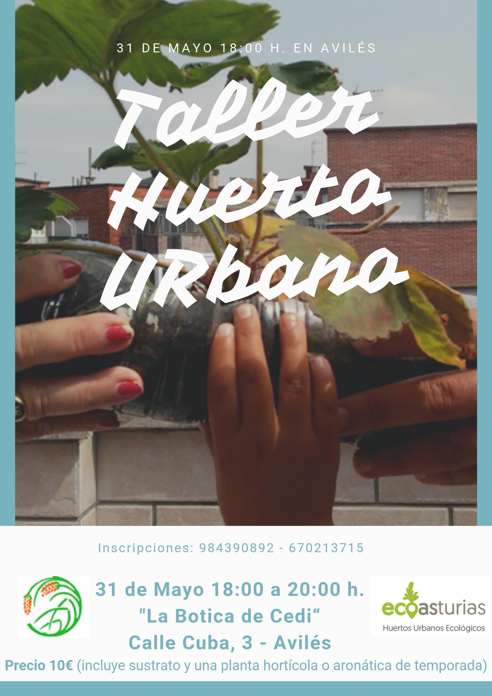 Taller Huerto Urbano Avilés